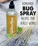 Homemade-bug-spray-recipes-that-really-work